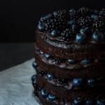 Extra čokoládový dort s ostružinami a borůvkami
