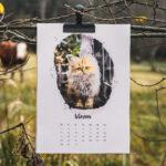 Kalendář na dobrou věc :-)